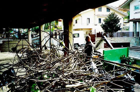 Edil Demolition Men srl Potatura